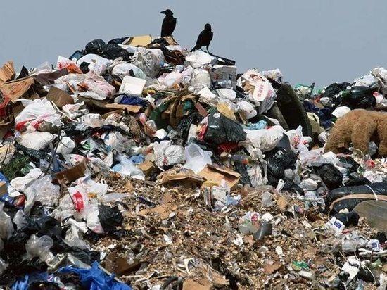 Глава областного минприроды Доронин съездил в столицу Поволжья обменяться опытом по утилизации мусора