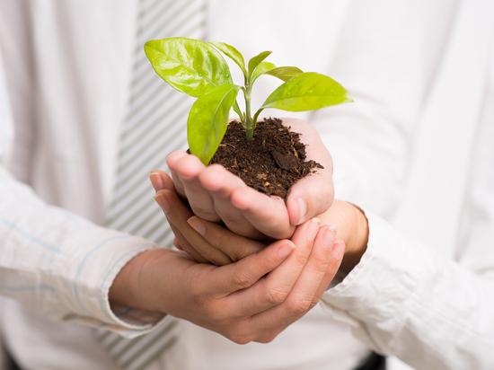 Шесть бизнес-инициатив получили поддержку Корпорации развития Архангельской области