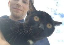 История Бусинки: бездомного котенка спасли дважды