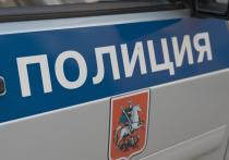 11-летний мальчик помог полицейским задержать воров в новой Москве