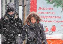 Прогноз на новый год в Москве: легкий мороз, умеренный снегопад