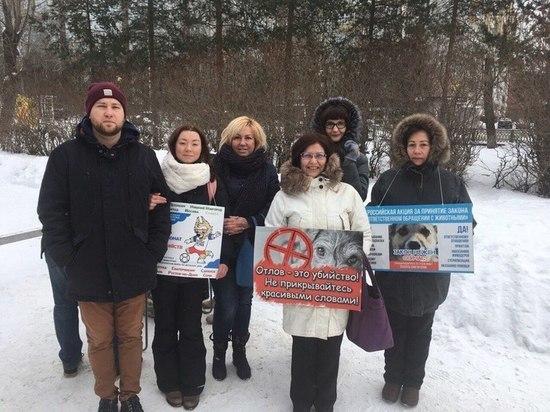 В субботу В Архангельске прошёл митинг в защиту животных