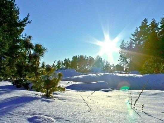 Мороз и солнце: 8 марта в Архангельской области ожидается чудесная погода