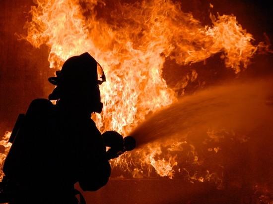 Семь с половиной часов боролись с огнём трое брандмейстеров в Холмогорском районе.