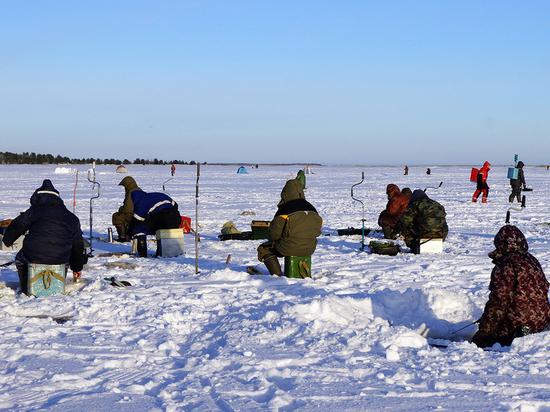 На льду Лахтинского озера под Архангельском соревновались в зимней рыбалке