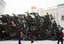 Главную елку страны в Кремле разобрали без потерь